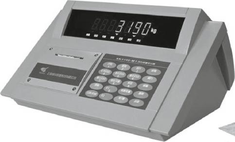 Весовой терминал ZEMIC DM-1