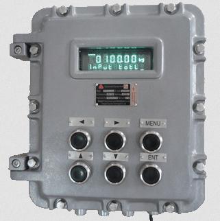 Весовой терминал SUPMETER BST106-H взрывозащищенный