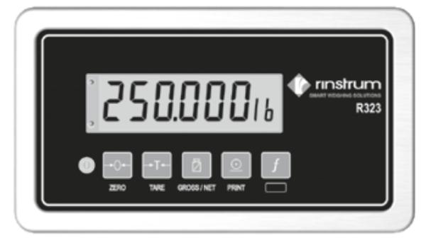 Весовой индикатор Rinstrum R320
